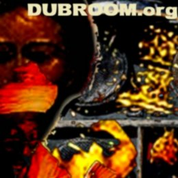More Information On the dubroom